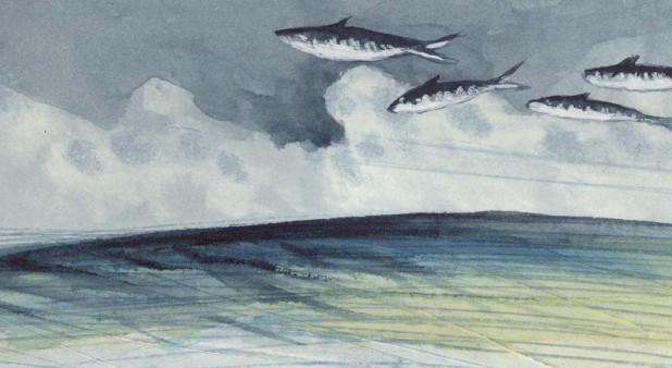 View from flying fishes - Watercolor of Helene Chevarie