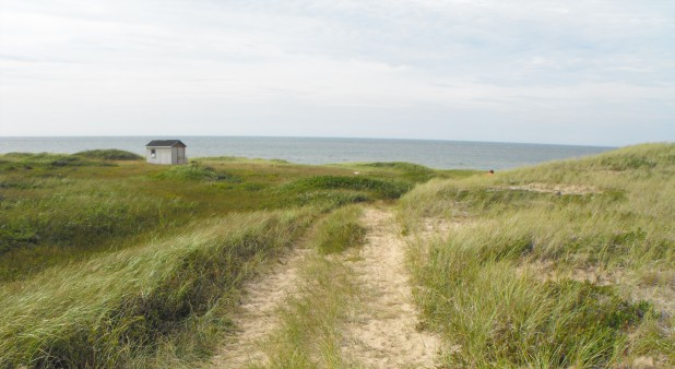 The path to the beach behind the house