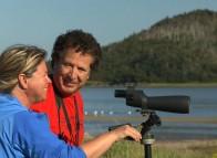Birdwatching - Les Îles de la Madeleine