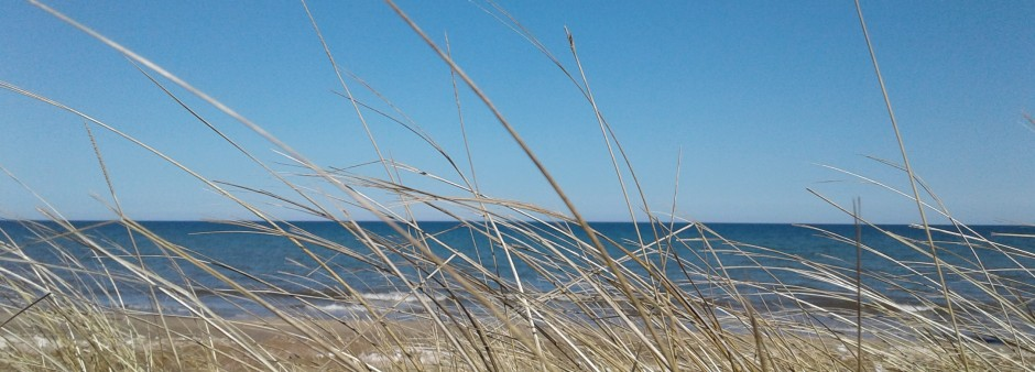 Îles de la Madeleine, hay dune, beach, sea, sky